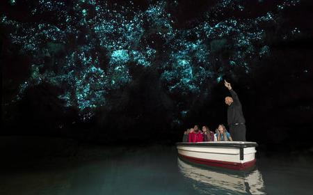 Waitomo Glowworm Express Tour from Auckland