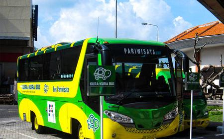 1-Day Pass Kura Kura Bus