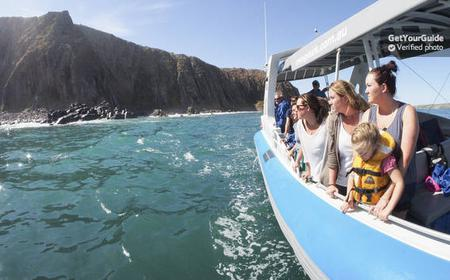 Victor Harbor and Granite Island: Scenic Wildlife Cruise