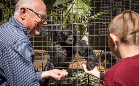 Adelaide Zoo: Meet the Primates Experience