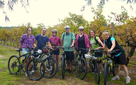 Mclaren Vale Hills Vines and Wines by Bike