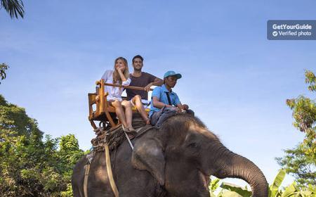 Bali Zoo: Elephant Expedition