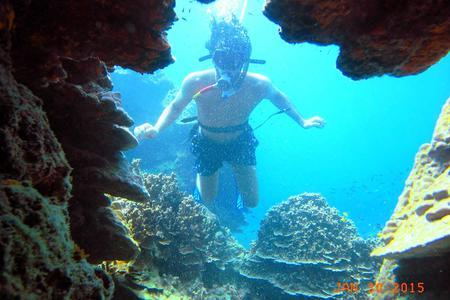 Local Diving off Koh Samui