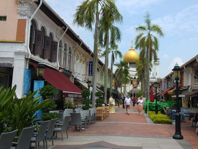 Singapore Bike Tour with Kampong Glam and Marina Bay Waterfront