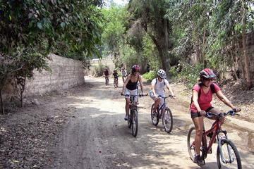 Full-Day Pachacamac Valley Mountain Biking from Lima