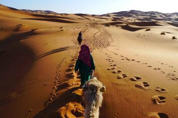 4-Day Private Tour from Marrakech to Fez Through Merzouga Desert