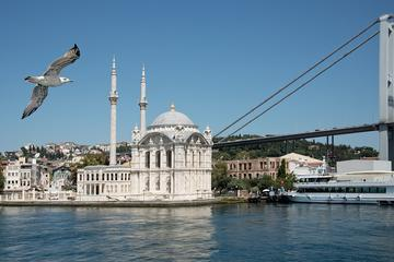Hagia Sophia and Topkapi Palace Private Guided Tour From Istanbul