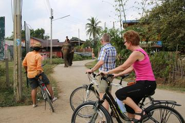 Colors of Ayutthaya Full-Day Bike Tour