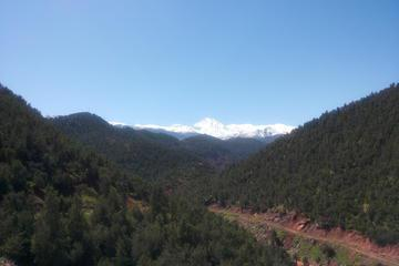 Private Tour: Full-Day Trip to Ourika Valley in the High Atlas Mountains from Marrakech