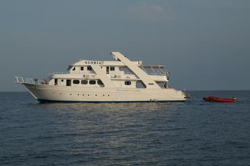 2-Day Snorkeling Tour in Sataya from Marsa Alam