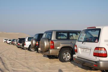 Desert Safari with Overnight Camping from Doha