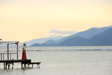 Private Day Tour: Florianópolis Island with Professional Pictures