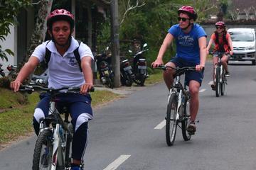 Bali Downhill Cultural Cycling Tour