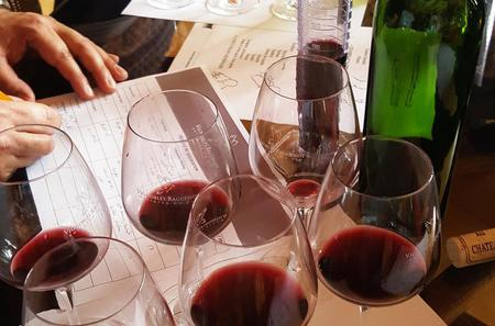 Private Tour to Bordeaux Winery and Cognac Distillery with Wine Workshop from Bordeaux