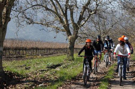 Private Wine and Bike Combo Full-Day Tour with Lunch