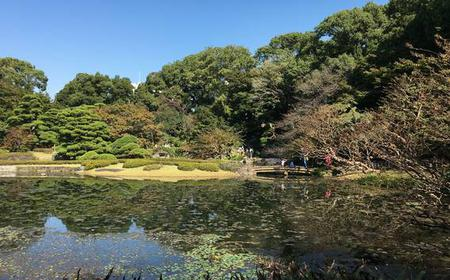 From Tokyo: Half-Day Bus Tour w/ Asakusa & Imperial Palace