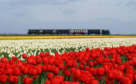 North Holland by Steam Ship & Steam Train Full-Day Tour