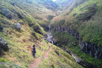 Walking Tour: Ribeira Funda and Furnas from Ponta Delgada
