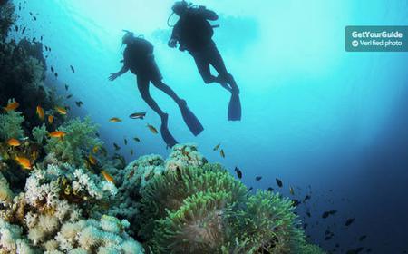 Bali: Padangbai Blue Lagoon Beginner's Dive Experience