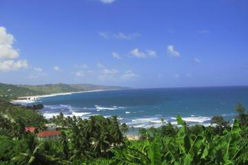 Barbados 360 Island Tour