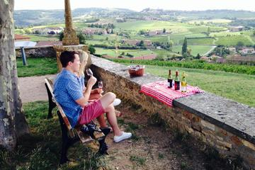 Private Tour: Half-Day Beaujolais Tour with Wine Tasting from Lyon