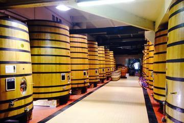 Rhone Valley Full Day Wine Tasting Tour