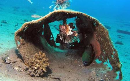 Sharm El Sheikh: Full-day Diving at Canyon & Blue Hole
