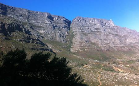 Table Mountain Platteklip Gorge 1/2 day