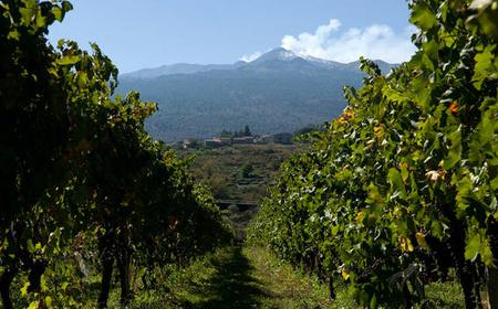 From Catania: Full-Day Etna & Wine Tour