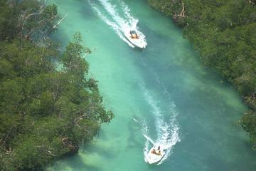 Adventure Mangrove Channels: Driving your Own Speedboat