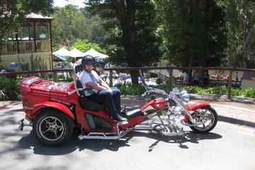 Trike Tour of Yarra Bend Park Melbourne for Two