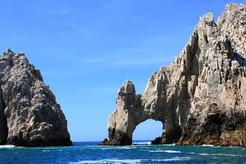 Snorkeling at Pelican Rock, Sea Lions Colony and Land's End Arch Sightseeing Tour in Los Cabos