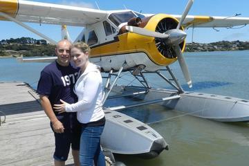Romantic Sunset Champagne Seaplane Tour over San Francisco