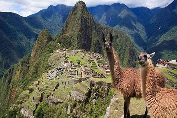 7-Day Peru: Lima, Cusco, Sacred Valley and Machu Picchu Tour