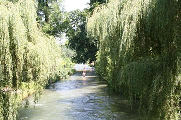 Munich Walking Tour: Munich's English Garden and Colorful History and Culture in the City Center