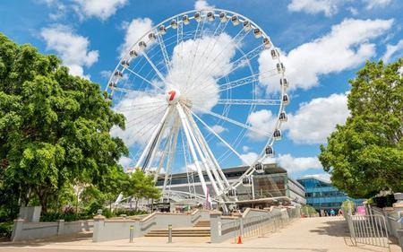 Brisbane Sightseeing, River Cruise, Lone Pine Sanctuary and Mt Coot-tha