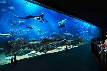 S.E.A Aquarium + 2 Ways Transfer