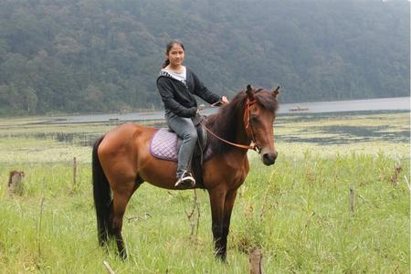 Rainforest Horse Riding Tour at Tamblingan Lake