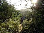 Half-Day Guided Walking Tour: Rocha de Pena, Algarve