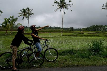 Downhill Cycling Tour from Tegalalang Village (From South Bali Area)