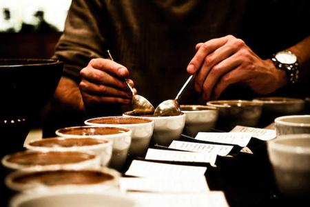 Coffee Workshop - Cupping