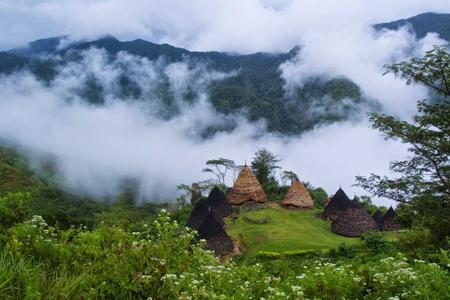 2D/1N - Wae Rebo Tribal Village & Cinca Rami Waterfall