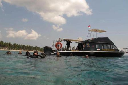Diving for certified diver in Gili Tepekong & Gili Minpang (from Bali)