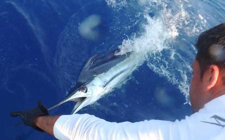 Madeira: Big Game Fishing Boat Tour