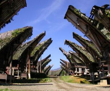 3 Days Exploration of Toraja Highland