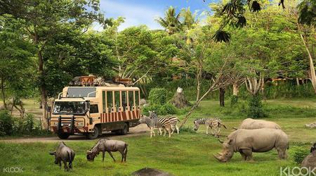 Bali Safari and Marine Park 'Rhino'