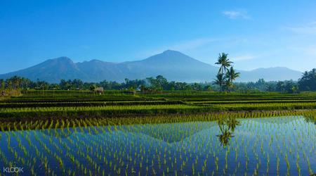 Lombok Nature Day Tour