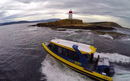 Hobart Iron Pot Cruise