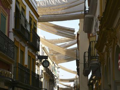 Seville Walking Tour - Small Group