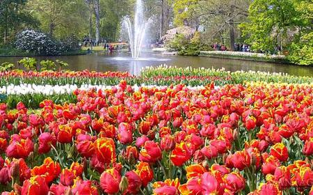 Half-Day Keukenhof Tour with Guide